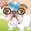 Dr.Bulldog