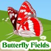 Butterfly Fields A Free Puzzles Game