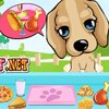 Puppy In The Park    A Free Strategy Game