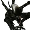 Aliens VS Predator A Free Shooting Game