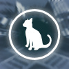 Time4Cat A Free Action Game