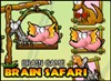 Brain Safari A Free Puzzles Game