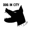Dog in City