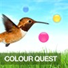 Color Quest A Free Strategy Game