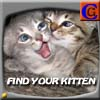 Find your Kitten A Free Action Game