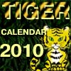 It is funny Calendar of Tiger year 2010