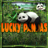Lucky Pandas A Free Casino Game