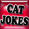 Cat Joke Shooter