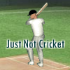 Just not cricket A Free Action Game