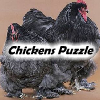 Chickens Puzzle