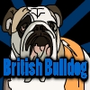 British Bulldog A Free Sports Game
