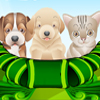 Puppy and Kitten Caring Game A Free Education Game