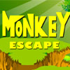 Monkey Escape A Free Puzzles Game