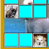 Match pictures of cute puppies to remove tiles and see one of the pictures full size. More pictures for harder difficulty.