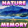 Brain Memory: Nature A Free BoardGame Game