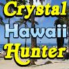 SSSG -  Hawaii A Free Puzzles Game