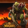 The World of Warcraft Quiz