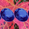 Hidden Gemstones: Autumn Leaves