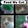 Feed my Cat
