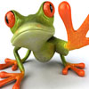 Frog A Free Action Game