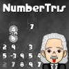 NumberTris A Free Action Game