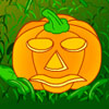 BobiBobi Halloween