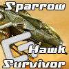 Sparrow Hawk Survivor
