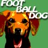 FootballDog