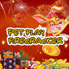Pet play firecracker A Free Puzzles Game