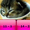 Baby cats subtraction puzzle