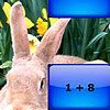 Rabbit family addition puzzle A Free Education Game