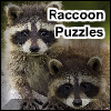 Raccoon Puzzles