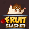 Fruit Slasher A Free Action Game