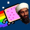 Nyan Bin Laden A Free Action Game