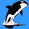Whales - Protectors of the Sea A Free Education Game