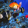 Underwater Adventure Hidden Object A Free Adventure Game