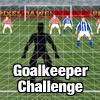 Goalkeeper Challenge! A Free Sports Game
