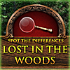 Lost in the Woods (Spot the Differences Game) A Free Education Game