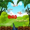 Bird Shooting A Free Action Game