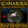 Canaries in a coalmine - Bird Spotting