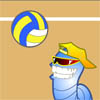 Volley A Free Sports Game