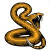 Snake Pro - Vipera berus