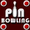 PinBowling A Free Action Game