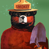 Smokey Bear Jigsaw Puzzle
