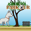 Parkour A Free Action Game
