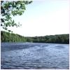 Jigsaw: Sunny Day Lake