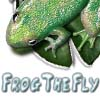 Frog The Fly A Free Action Game