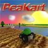 Peakart A Free Driving Game