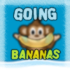 A monkey in the city? Winter? Snow? Completely bad combination...  Guide Nana through the backyard avoiding the kid, the dog and some random car wheels being hurled towards you!  `Arrow Keys` to move, `Space` to jump. Hold `Space` for a higher jump.