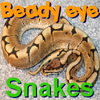Beady Eye:Snakes is a unique spot-the-difference game with action! When you find a difference you will be rewarded with gold coins that you have to catch to collect! Collect your gold and use it to buy hints during the game. Play over 10 levels to find all the differences.